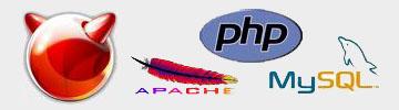 webServer logo